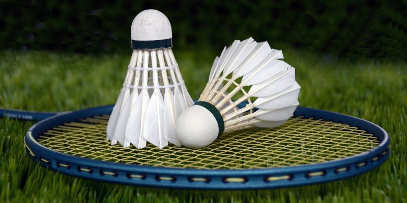 Badminton: Kreisfachverband tagt online
