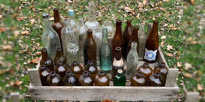 Försterin sammelt Flaschenfunde: Solling-Wald spiegelt Reichtum an Biersorten wider