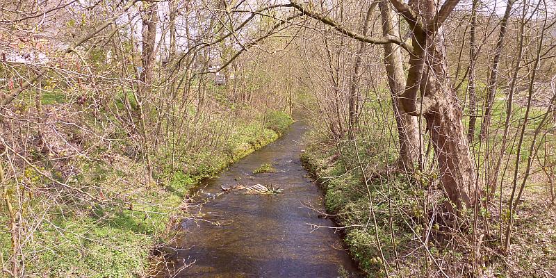 Die Bauarbeiten zur ökologischen Verbesserung der Wispe in Delligsen gehen weiter