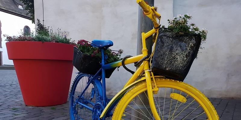 Blumendiebe verärgern Höxteraner Kaufleute