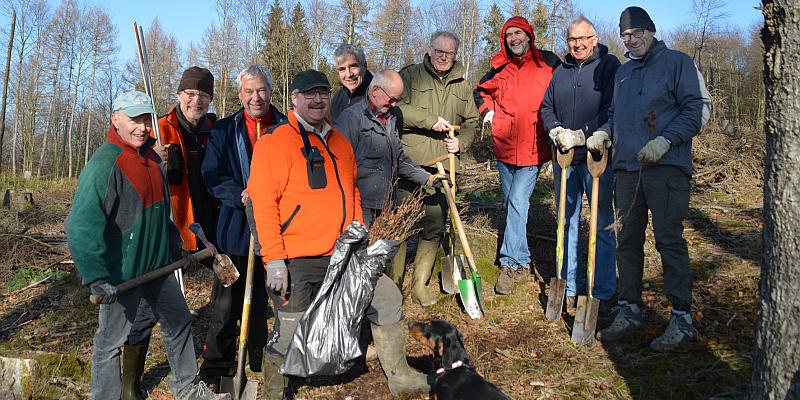 Wald bewegt Sportler: Aktive vom Ruderverein Weser Hameln pflanzen Buchen im Solling