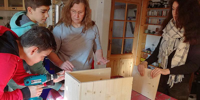 NABU: Jetzt schon Vogelhäuser bauen