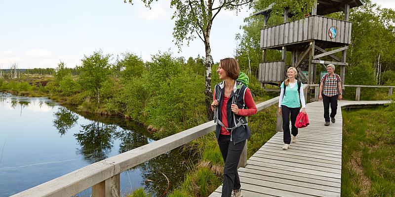 Wildes Wochenende in der Solling-Vogler-Region im Weserbergland - Wilde Heimat lädt zu abwechslungsreichem Kurzurlaub